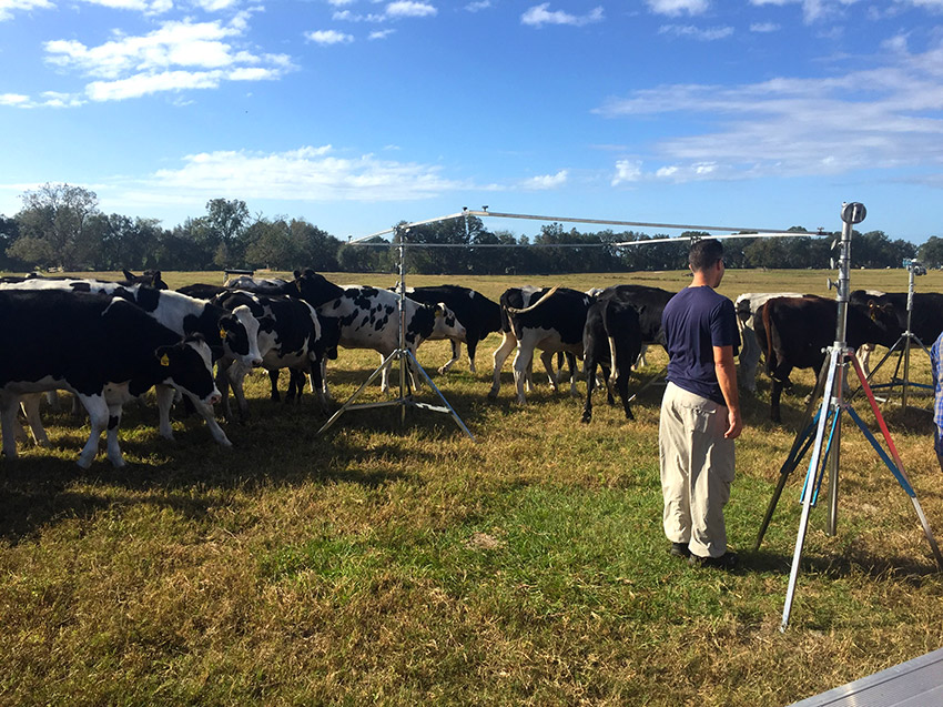 Dairy Farm Behind the Scenes Social Media Video 3