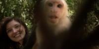 honduras monkey video grab